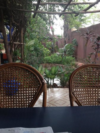 Le Karite Bleu : The garden from the breakfast table.