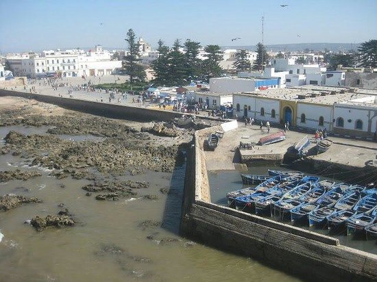 Essaouira Urban Adventures: View of Essaouira.