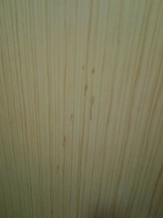 Doubletree Cleveland Downtown / Lakeside : Stained Wall