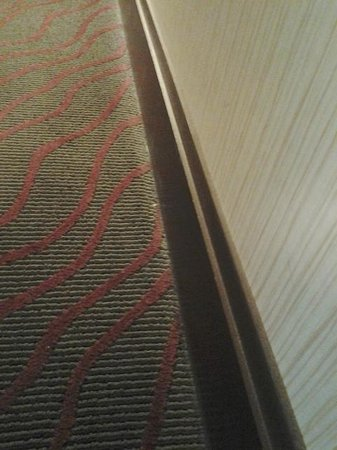 Doubletree Cleveland Downtown / Lakeside: Dirty Floor