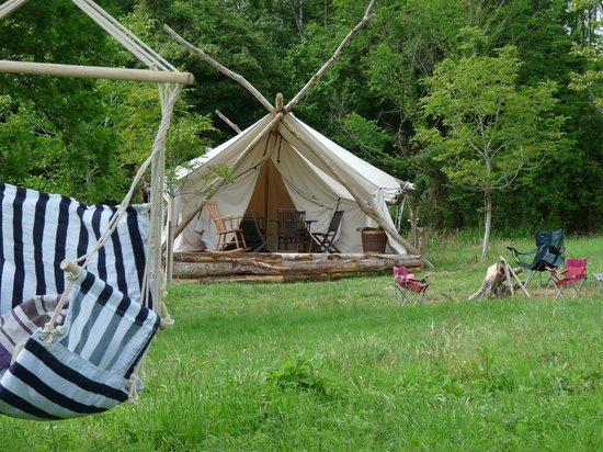 Safari Glamping : The camp