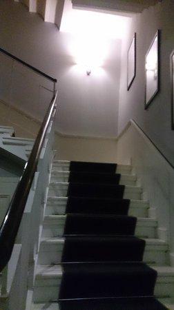Hotel Bologna : Лестница в отеле