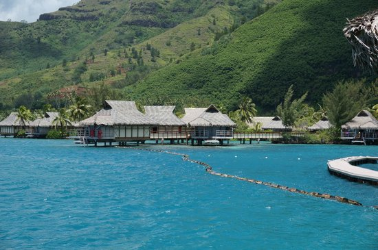 InterContinental Moorea Resort & Spa: View from 626