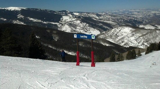 Vail Mountain Resort: Vail