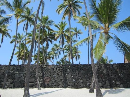 Pu'uhonua O Honaunau National Historical Park : wall