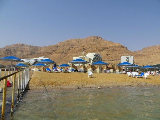 Prima Oasis Dead Sea: Пляж отеля Оазис и Спа клуб.