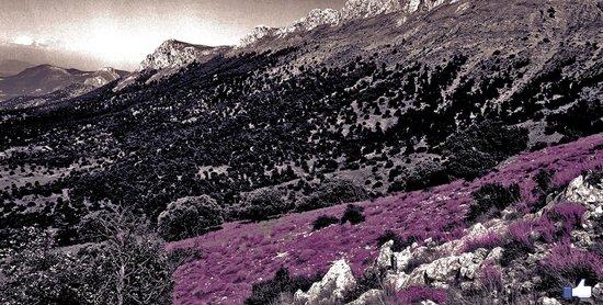Sierra de Maria-Los Velez Natural Park