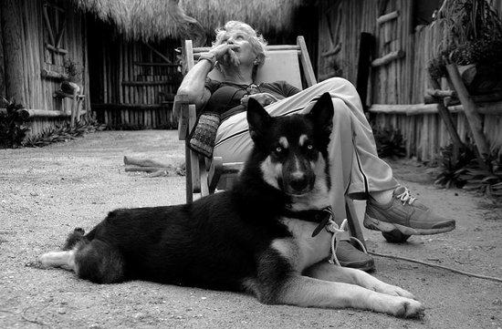 D'Arny's: Mi mamá y Lobo en el restaurante