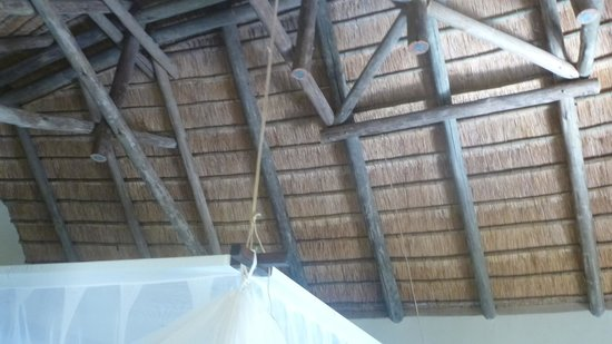 Shishangeni Private Lodge: particolare del tetto