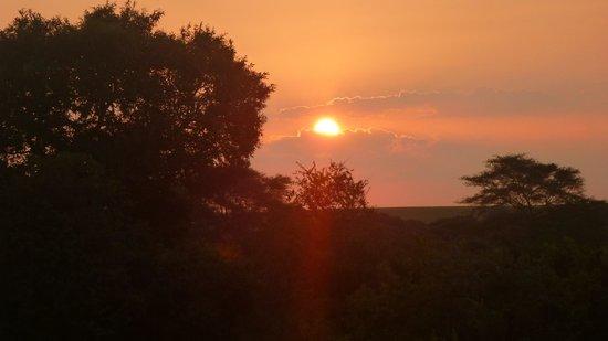 Shishangeni Private Lodge : tramonto nel bush