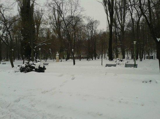 Carol Park (Liberty Park): The park during winter.