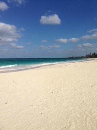 Sky Beach Club: Sky Beach Expanse