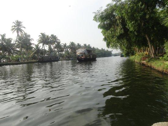 Palmgrove Lake Resort: river