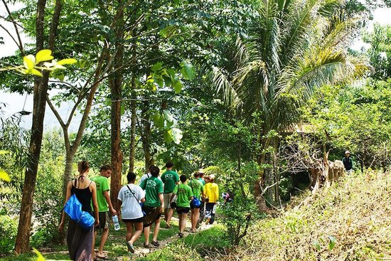 Wonderful Tours Laos - Day Tours: Trekking up the side of a mountain just outside of Vang Vieng