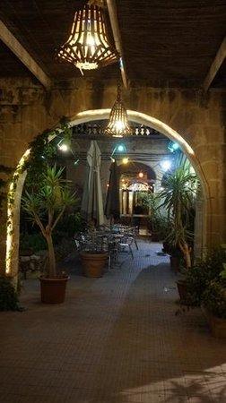 Imperial Hotel: Garden