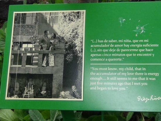 Musée Frida Kahlo : Quadro no jardim