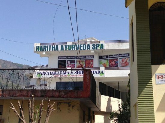 Hotel Narayana Kunj: Ayurvedic spa on the top floor