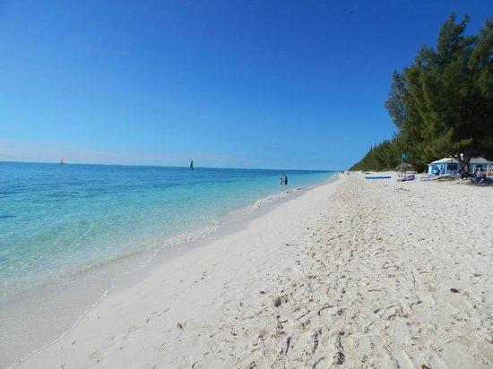 Viva Wyndham Fortuna Beach: Wonderul Beach