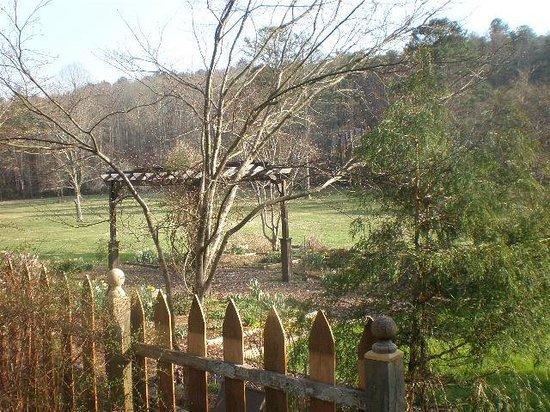 Glen-Ella Springs Inn : Natural Arbor in garden