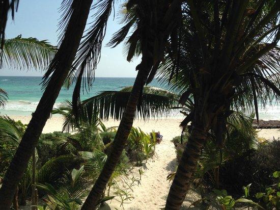 Hotel Amoreira: La spiaggia vista dall'albergo