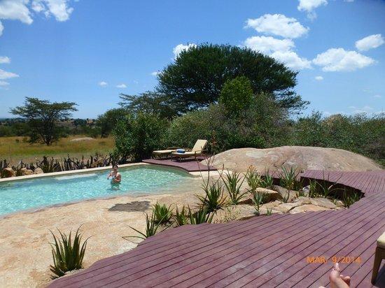 Sayari Camp, Asilia Africa : La piscine