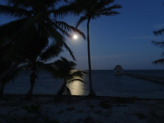Cocotal Inn & Cabanas: Moon rise from our beach front