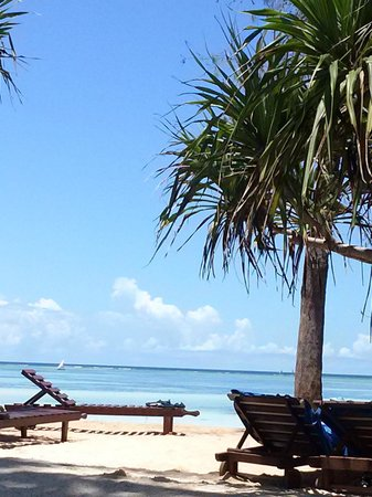 Bluebay Beach Resort and Spa: jardin et plage