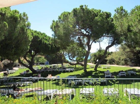 Club Med Da Balaia: Giardino
