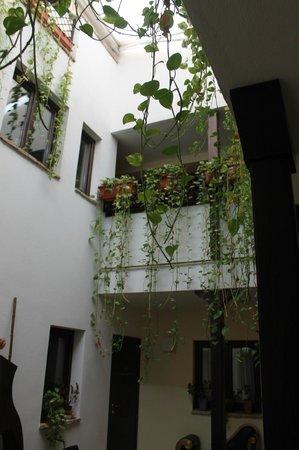 Hospederia Alma Andalusi: Patio andaluz y planta alta