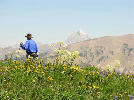Hole Hiking Experience: Mt Glory