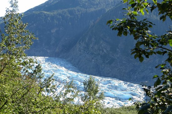 Mendenhall Glacier : View from the hiking trail