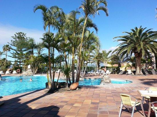 Apartamentos Playa De Los Roques: Pool