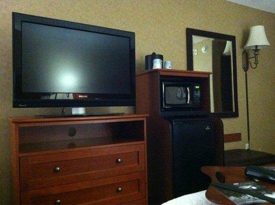 هامبتون إن آند سويتس تيميكولا: Microwave, t.v. and fridge in room.