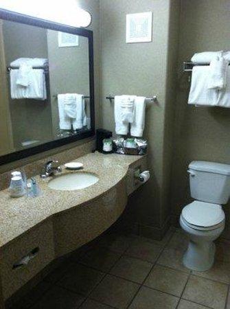 Hampton Inn & Suites Temecula: Clean bathroom.