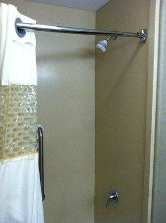Hampton Inn & Suites Temecula: Shower.