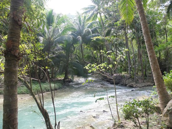 Cebu . Filippine - Kawasan Falls Marzo 2013