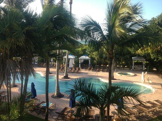 Hawks Cay Resort: Pool