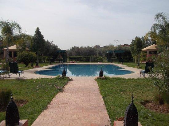 Las Palmeras : The pool