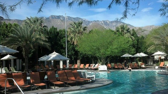The Riviera Palm Springs, A Tribute Portfolio Resort: View of pool & mountains (Bikini pool)