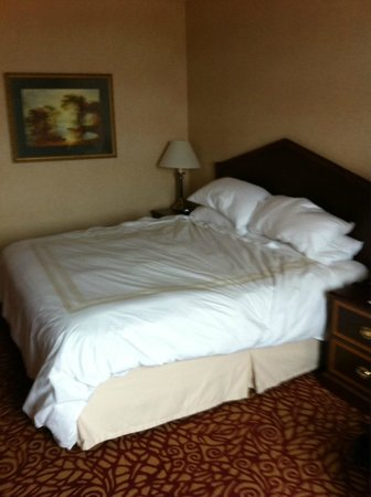 Pittsburgh Marriott North: The comfy bed
