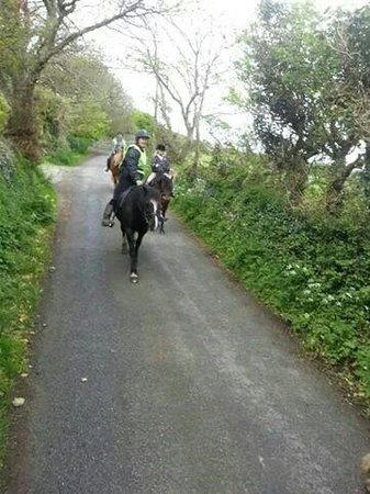 Llandwnda Stables - Horse Riding