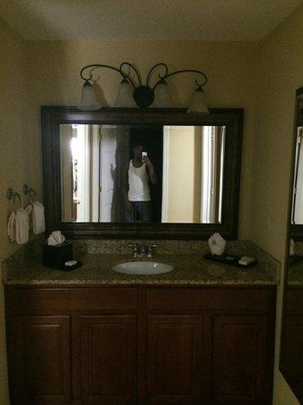 Clarion Collection Hotel Arlington Court Suites: Bathroom Mirror