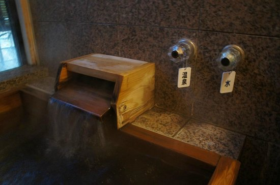 Ryokan Manryo: 貸切風呂の温泉はここから注がれます