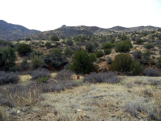 Fort Bowie National Historic Site: Typical view on the hike in