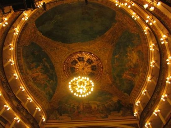 Teatro Amazonas: Teto do teatro