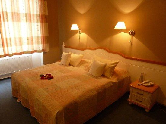 Hotel Julian : Chambre