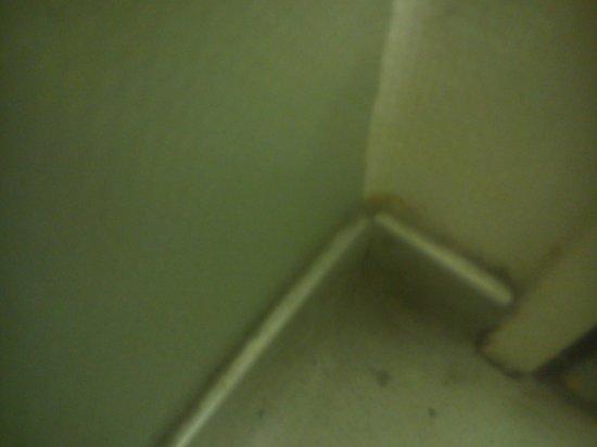 Ibis Budget Annecy : Ménage pas fait
