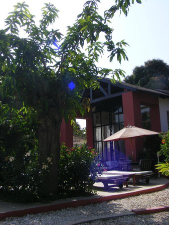 Hibiscus House: Dining room/grounds