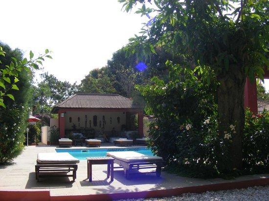 Hibiscus House: Pool/bar area