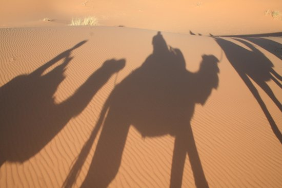 Viaje Por Marruecos - Private Day Tours: Los 3